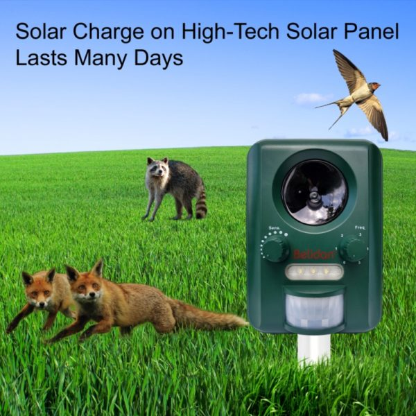 Belidan Animal Repellent Ultrasonic Outdoor – Animal Repeller – Cat Dog Skunk Deer Bird Fox Rats Raccoon Repellent – Animal Deterrent Device Solar Powered – Motion sensor LED lights USB charger